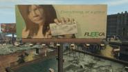FLEECA cartel