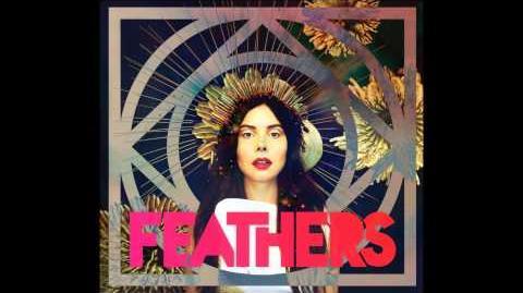 Feathers Dark Matter