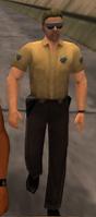 VCPD PolicíaVCS