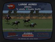 Carrera caballos en progreso