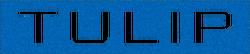 Tulip-GTAO-Logo