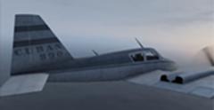 CUBAN 800 BACK