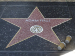 AdamFirstEstrellaGTAV