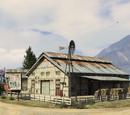 Shady Tree Family Farm