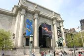 Museo Libertonian-realidad