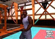 CJ Artes marciales Cobra