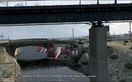 Bajo el puente 6