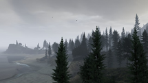 Bosque de Paleto Neblina