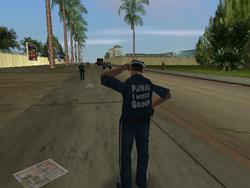 Patrol Investigation Group VC 2