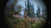 Caza-Ciervos