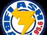 Flashback 95.6 FM