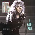 I Can't Wait - Stevie Nicks.jpg