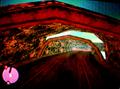 Vista del túnel por detras.PNG