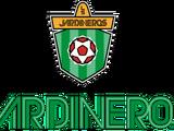 L.S Jardineros