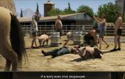 Beta caballoGTAV