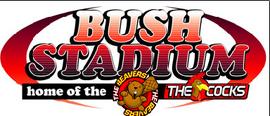 BushStadium