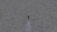 Nadar CW