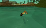 Nadar VCS