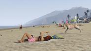 Del Perro Beach general