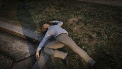 Dr friedlander muerto