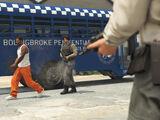 Fuga de prisión