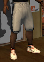 Pantalones basquet