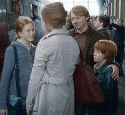 P7 Familia Weasley Granger