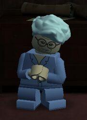 Madam Malkin Lego