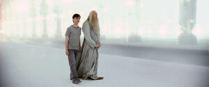 Harry and Albus limbo