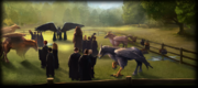 Cp 6, m3 Harry Potter y el prisionero de Azkaban - Pottermore