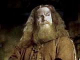 Fundadores de Hogwarts