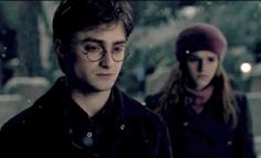Harryhermionegodrics
