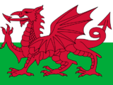 Equipo Nacional Galés de Quidditch