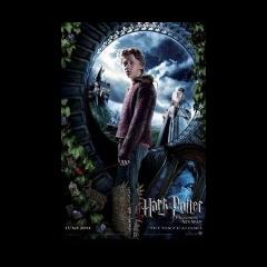 Ha llegado la hora (Ron y Dumbledore)