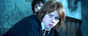 P4 Ron enojado