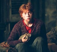 Ron y Scabbers