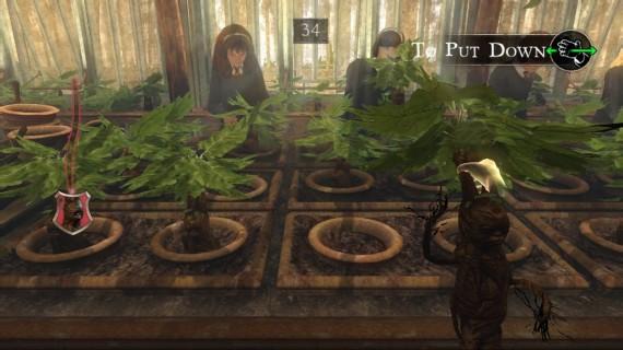 Archivo:Harry-Potter-For-Kinect-Mandrágora.jpg