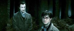 P7 Harry-potter7-harry lupin