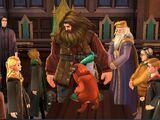Cumpleaños de Rubeus Hagrid