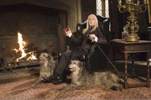 Lucius en su mansión