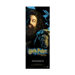Póster de Hagrid y Fang