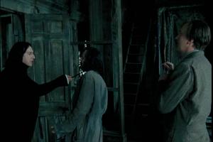 P3 Severus, Sirius y Remus