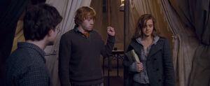 P7 Ron levanta la mano