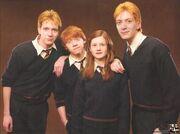 Los hermanos weasley
