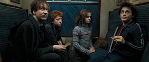 Lupin con Hermione, Ron, Crookshanks y Harry en el tren