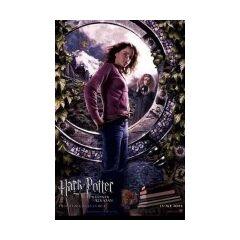 Ha llegado la hora (Hermione y Trelawney)
