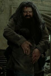 Hagrid hugs Harry