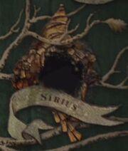 Sirius borrado
