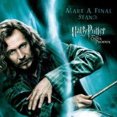 Tomar una posición final (Sirius y Bellatrix)