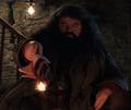Hagrid y su varita